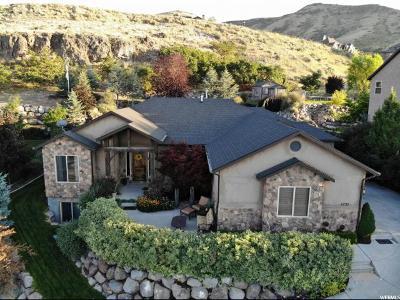 Herriman Single Family Home For Sale: 5721 W Eldora Cir S