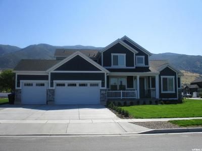 Farmington Single Family Home For Sale: 1023 S 475 W
