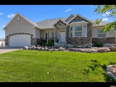 Orem Single Family Home For Sale: 911 W 1670 N