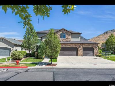 Cedar Hills Single Family Home Backup: 10588 N Sahalee St E #17