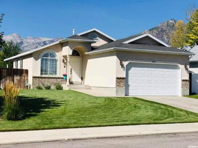 Cedar Hills Single Family Home For Sale: 4672 W Ferguson Way