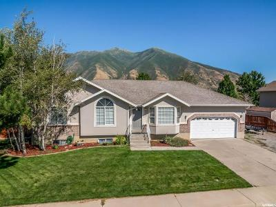 Spanish Fork Single Family Home Under Contract: 1429 S 2950 E