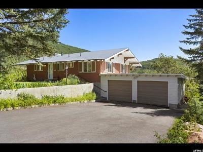 Park City Single Family Home For Sale: 125 Park View Dr #28