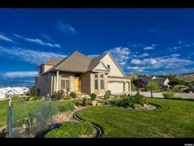 Herriman Single Family Home Under Contract: 7118 W Gina Rd