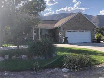 Payson Single Family Home For Sale: 9352 S 5600 W