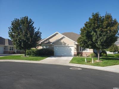 American Fork Single Family Home For Sale: 1049 E 450 N