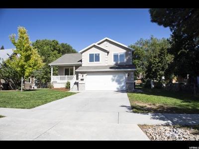 Springville Single Family Home For Sale: 273 S 200 W