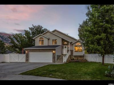 Pleasant Grove Single Family Home For Sale: 1059 W 860 N