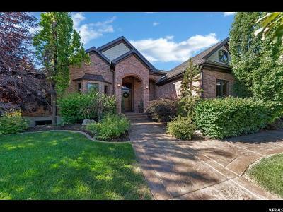 Salem Single Family Home For Sale: 610 E 50 N