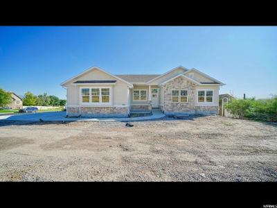 Lehi Single Family Home For Sale: 655 W Bull River Rd