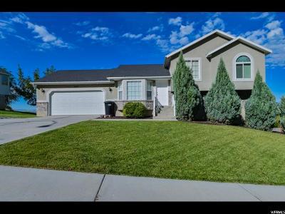 Provo Single Family Home For Sale: 1818 S Oregon Ave E