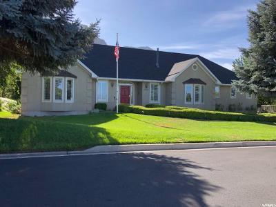 Provo Single Family Home For Sale: 3898 N Quail Summit Ln E