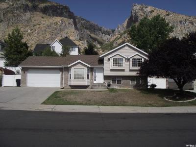 Springville Single Family Home For Sale: 1066 N 600 E