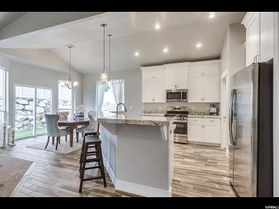Lehi Single Family Home For Sale: 806 W Valley Vista Way N