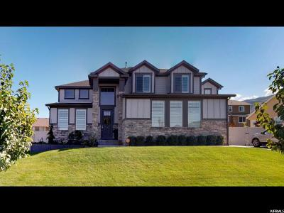 Saratoga Springs Single Family Home For Sale: 353 W Birch Dr