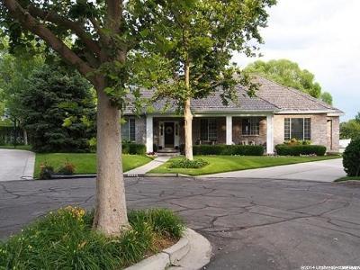 Orem Single Family Home For Sale: 1134 E River Ridge Ln S