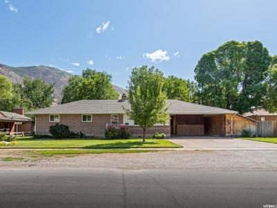 Springville Single Family Home For Sale: 240 N 300 E