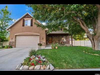 Orem Single Family Home For Sale: 1225 N 280 W