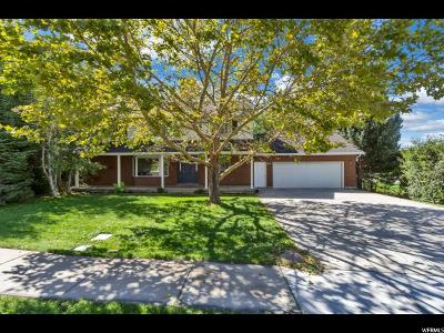Cedar Hills Single Family Home Backup: 4161 W 9860 N