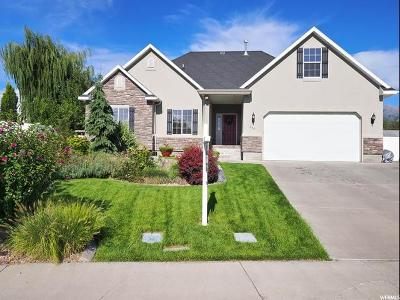 American Fork Single Family Home Under Contract: 752 W 450 N