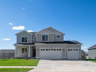 Santaquin Single Family Home For Sale: 1096 S Red Barn Dr #44