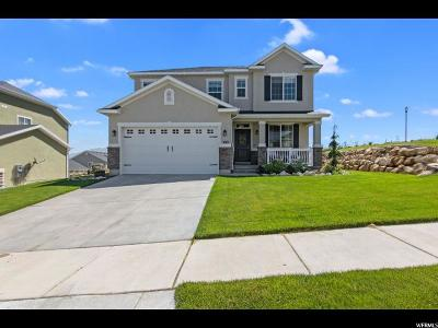 Saratoga Springs Single Family Home Under Contract: 593 Deer Meadow Dr