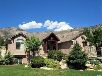 North Ogden Single Family Home For Sale: 910 E 3550 N