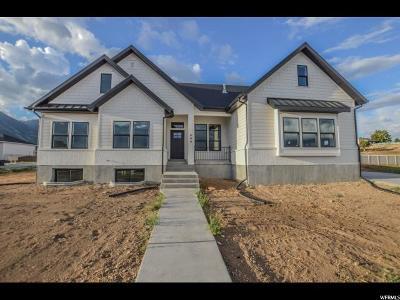 Salem Single Family Home For Sale: 688 E 310 N #5