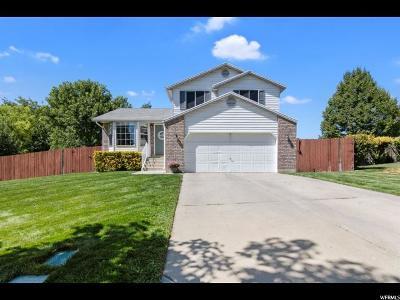 American Fork UT Single Family Home For Sale: $354,900