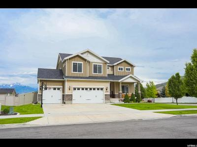 Herriman Single Family Home For Sale: 13783 S Chey Ct W