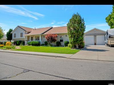 Lehi Single Family Home Backup: 248 E Davis Ln N