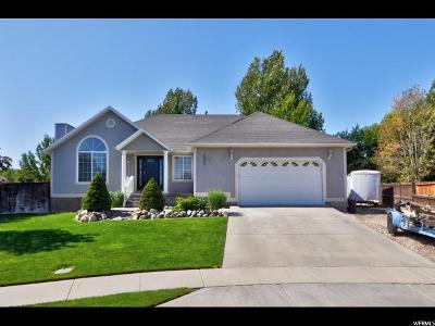 Riverton Single Family Home For Sale: 13946 S Kessler Peak Cir