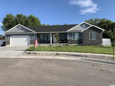 Hyrum Single Family Home For Sale: 447 W 60 S
