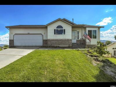 Lehi Single Family Home For Sale: 321 W 2540 N