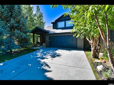 Park City Single Family Home For Sale: 8004 Mustang Loop Rd
