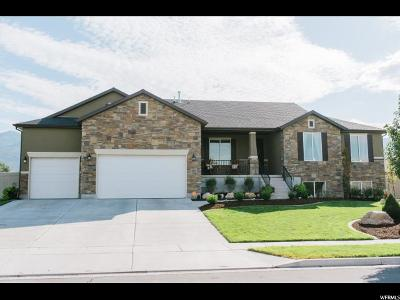 Kaysville Single Family Home Under Contract: 1569 Seabiscuit Dr W