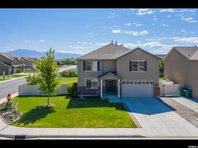 Lehi Single Family Home For Sale: 615 S Olive Pl