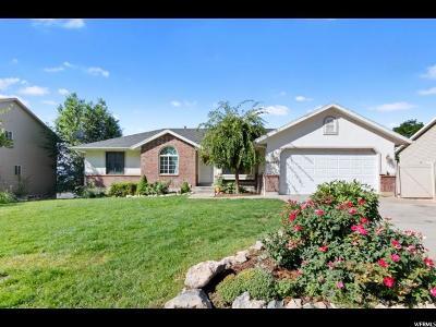 Springville Single Family Home For Sale: 1047 N 600 E