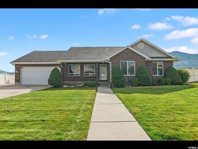 Payson Single Family Home For Sale: 687 S 1260 E