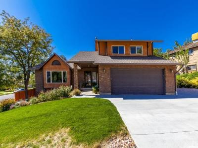 North Ogden Single Family Home For Sale: 3367 N 700 E