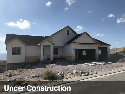 Eagle Mountain Single Family Home For Sale: 9901 N Patriot Dr E