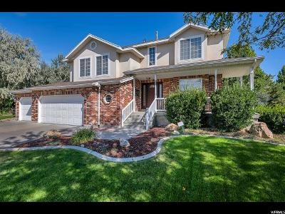 Riverton Single Family Home For Sale: 1082 High Creek Dr