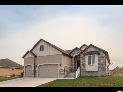 Salem Single Family Home For Sale: 46 N 900 E