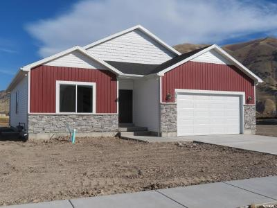 Hyrum Single Family Home For Sale: 1371 E 340 S