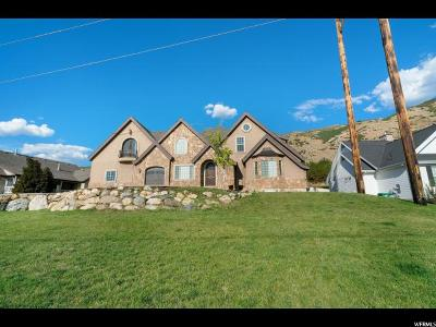 Provo Single Family Home For Sale: 4348 Wimbledon Dr N
