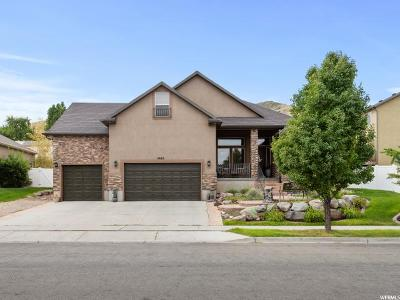Herriman Single Family Home For Sale: 5863 W Round Rock Dr