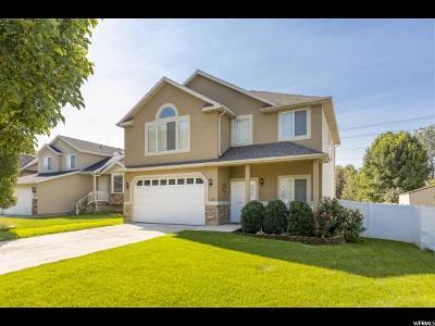Midvale Single Family Home For Sale: 129 W Settlement Cir S