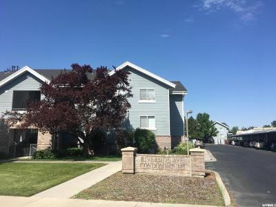 Provo Condo Under Contract: 1525 N Riverside Ave W #44