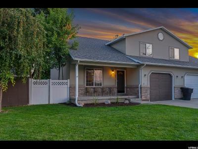 Springville Single Family Home For Sale: 412 E 250 N