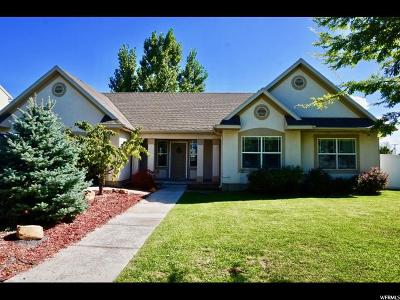 Springville Single Family Home For Sale: 851 W 425 N